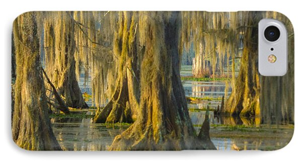 Cypress Canopy Uncovered IPhone Case