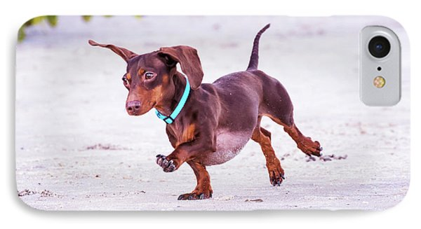 Dachshund On Beach IPhone Case