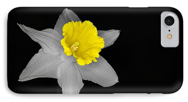 Daffo The Dilly Isolation IPhone Case
