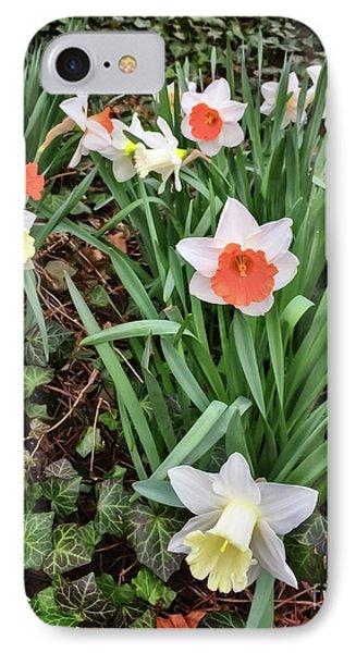 Daffodil - Spring Celebration IPhone Case