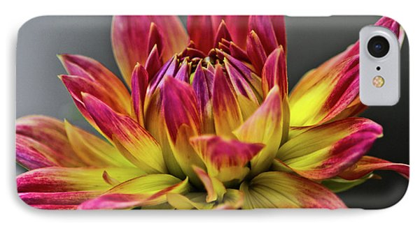 Dahlia Flame IPhone Case