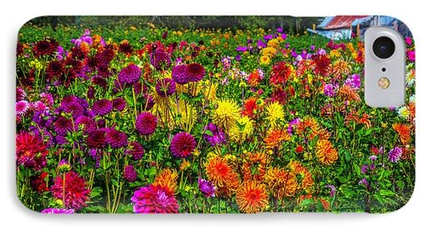 Dahlia Garden Oregon IPhone Case