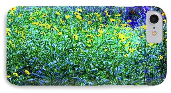 Daisy's In Field IPhone Case