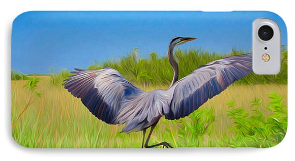 Dancing In The Glades IPhone Case