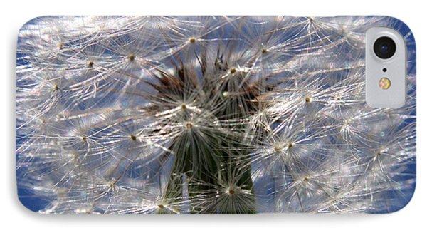 Dandelion IPhone Case