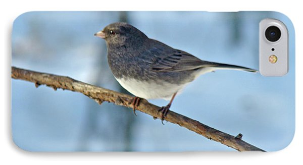 iPhone 8 Case - Dark-eyed Junco Or Snowbird - Junco Hyemalis by Mother Nature