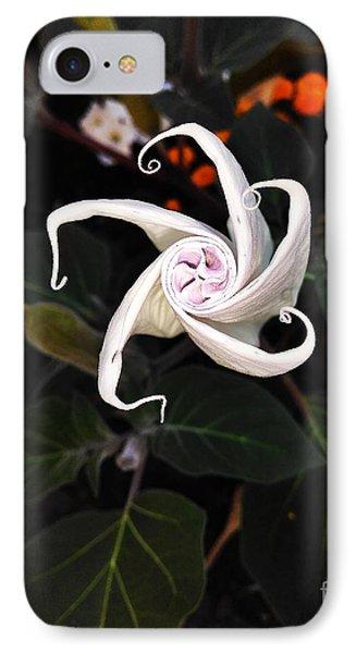 Datura Bud  IPhone Case