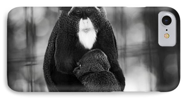 De Brazza's Monkey IPhone Case