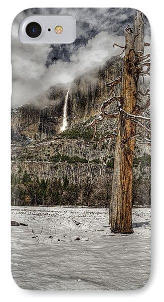 Dead Tree In Yosemite Valley IPhone Case