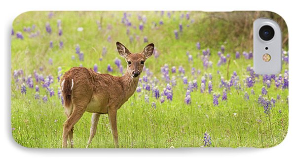 Deer In The Bluebonnets IPhone Case