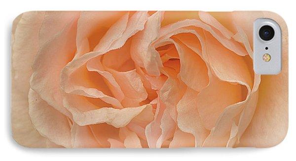 Delicate Rose IPhone Case