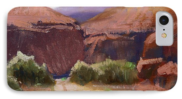 Desert Trail IPhone Case