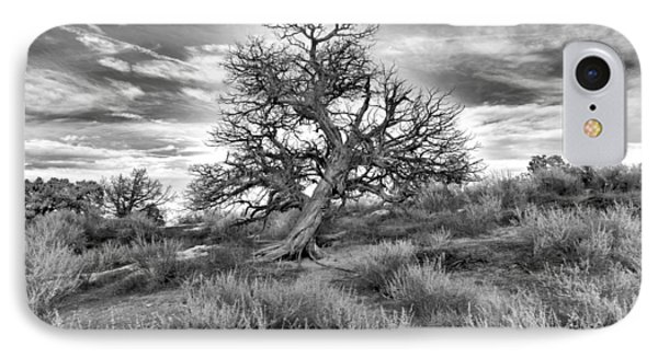 Devils Canyon Tree IPhone Case