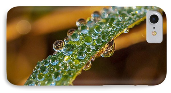 Dew Drop Reflection IPhone Case