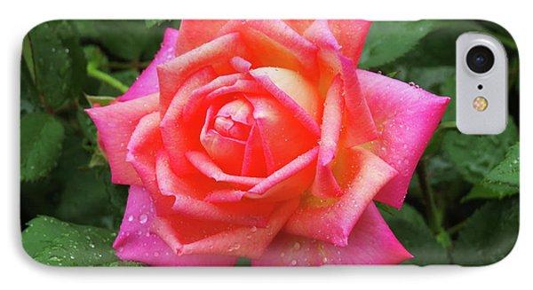 Dewy Rose IPhone Case