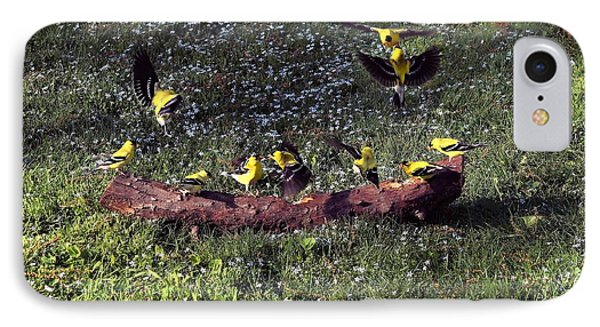 Goldfinch Convention IPhone Case