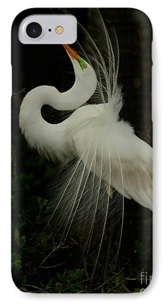 Displaying In The Shadows IPhone Case