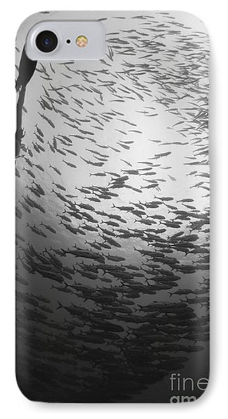 Diver And A Large School Of Bigeye IPhone Case