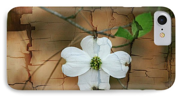 Dogwood Bloom IPhone Case
