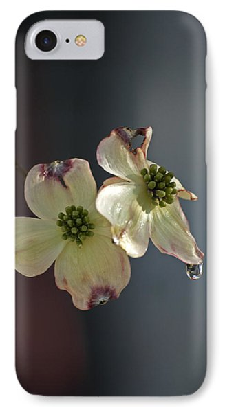 Dogwood Tear IPhone Case
