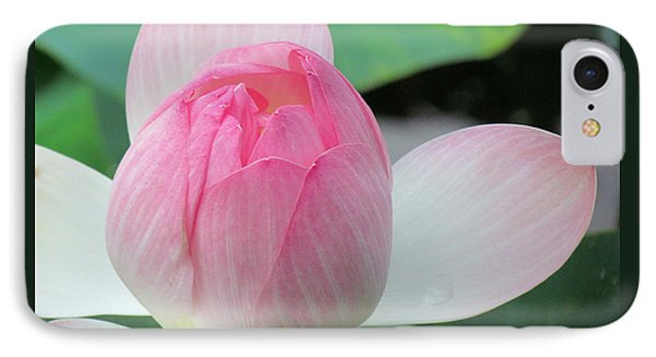Dotus On The Lotus  IPhone Case