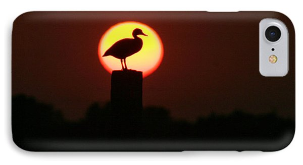 Duck On A Post IPhone Case