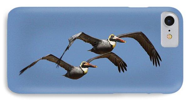 Duel Pelicans In Flight IPhone Case