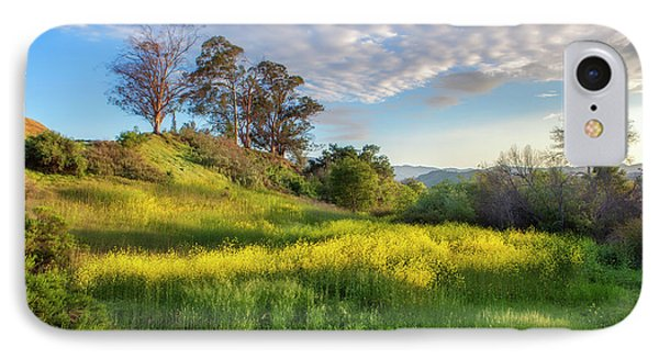 Eagle Grove At Lake Casitas In Ventura County, California IPhone Case