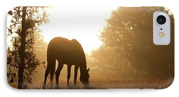 Early Fall Morning IPhone Case