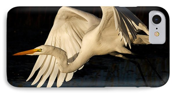 Early Light Egret IPhone Case