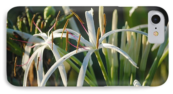 Early Morning Lily IPhone Case