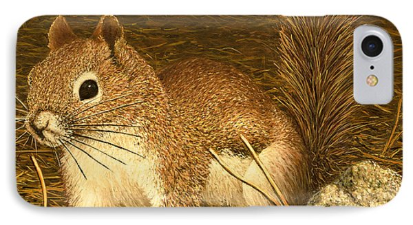 Eastern Pine Squirrel IPhone Case