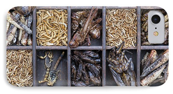 Edible Insects IPhone Case