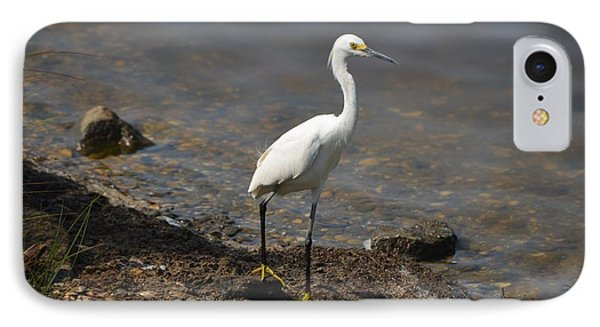 Egret 1 IPhone Case