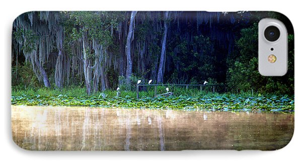 Egrets On A Fence IPhone Case