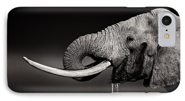 Bull iPhone 8 Case - Elephant Bull Drinking Water - Duetone by Johan Swanepoel