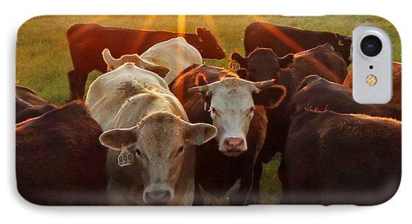 Elk County Herd IPhone Case