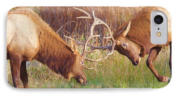 Elk Tussle Too IPhone Case