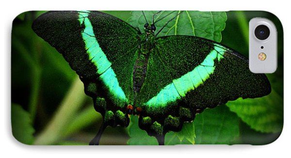 Emerald Swallowtail IPhone Case