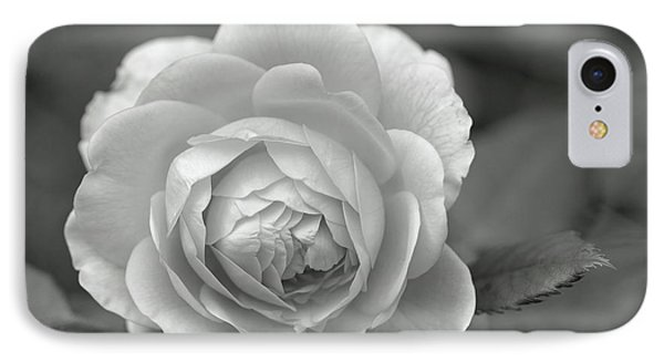English Rose In Black And White IPhone Case