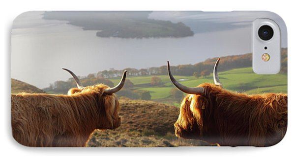Enjoying The View - Highland Cattle IPhone Case