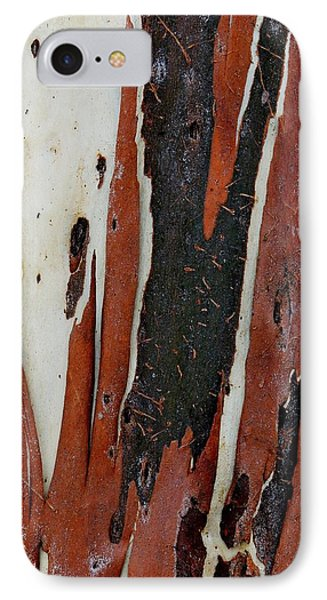 Eucalyptus Bark Abstract 2 IPhone Case