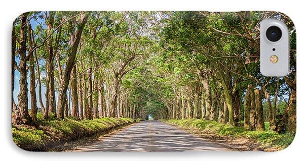 Eucalyptus Tree Tunnel - Kauai Hawaii IPhone Case