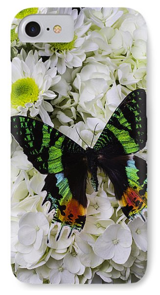 Exotic Green Butterfly IPhone Case