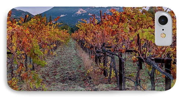 Fall In Wine Country IPhone Case