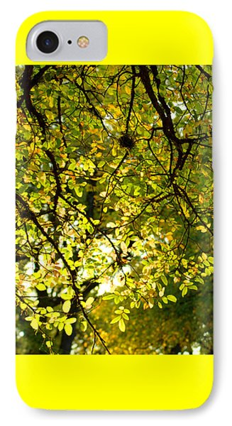 Fall's Unique Light IPhone Case