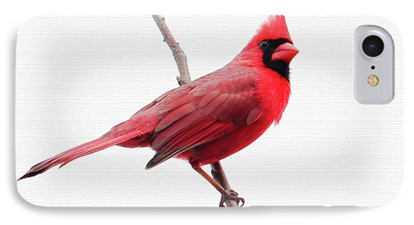 Father's Day Cardinal IPhone Case