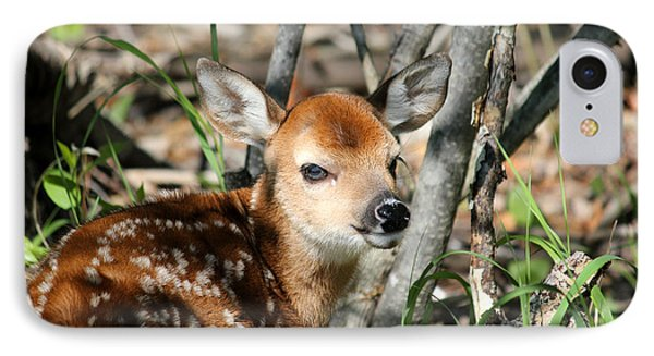Fawn Face IPhone Case