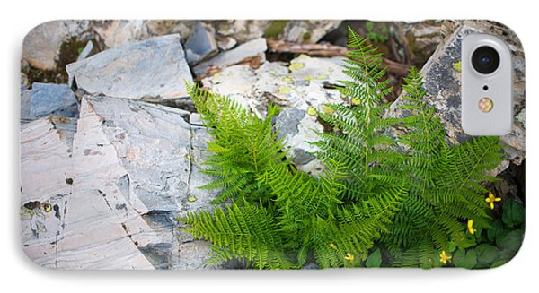 Fern Among Glacial Rock IPhone Case