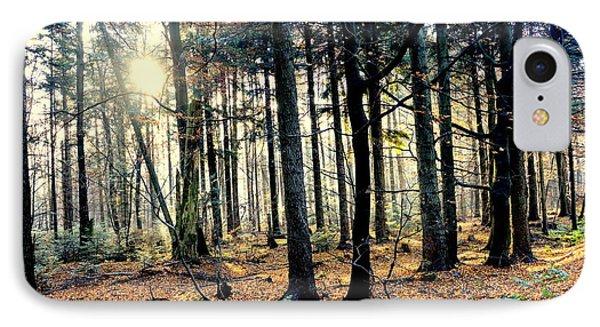 Fir Forest-3 IPhone Case